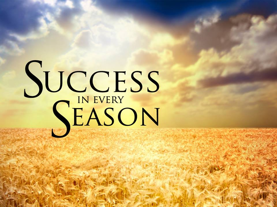 Success in every season