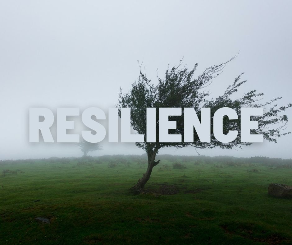 Resilience Post